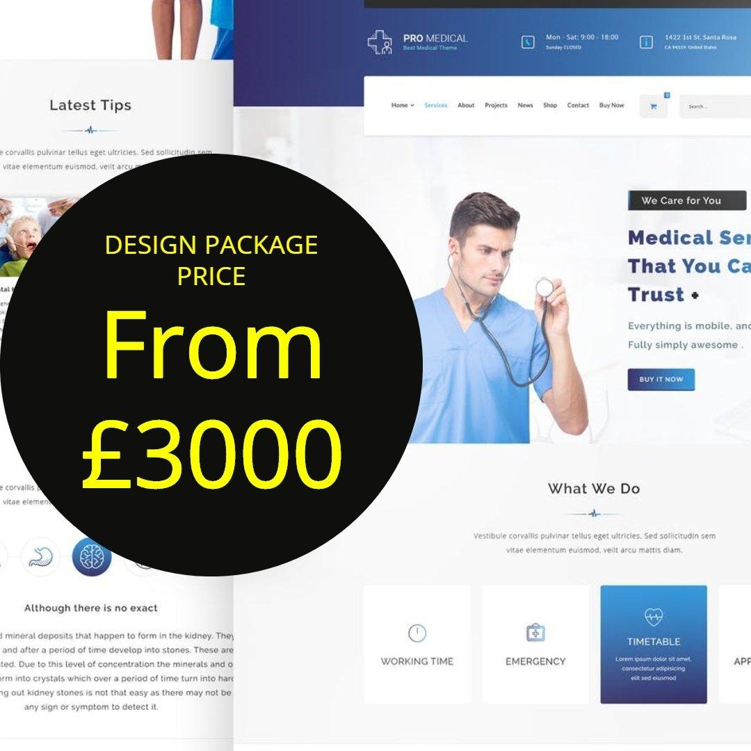 How to Build a Professional WordPress Website Design