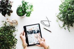 Building a webiste with wordpress
